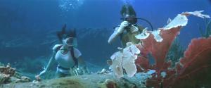 Our scuba lady...